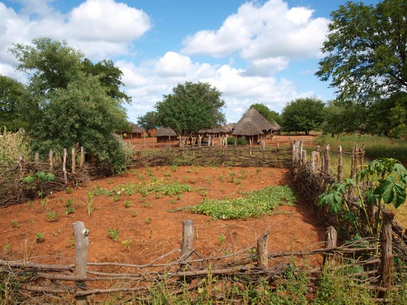 Limpopo Transfrontier Park