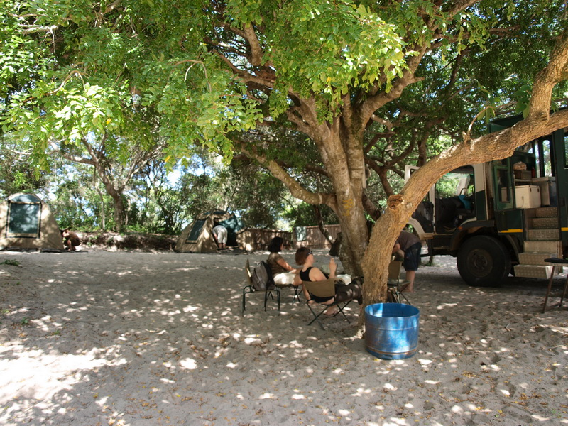 Palmerias camp, Lake Beline