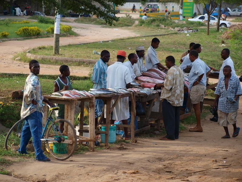 Fish, Dar Es Salaam