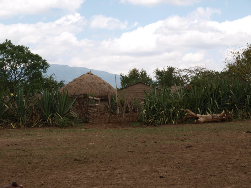 Maasai Village walk