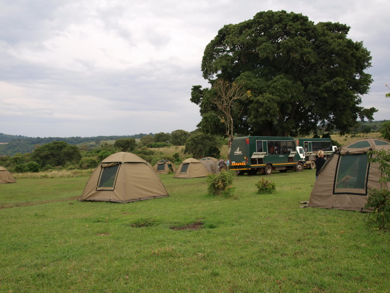 Simba A Camp, Ngorongoro Crater