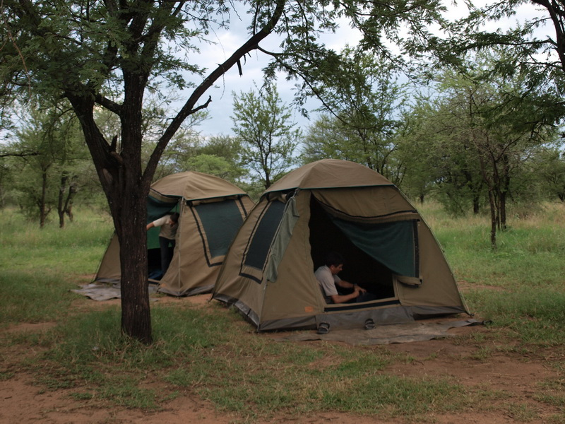 Serona Camp, Serengeti