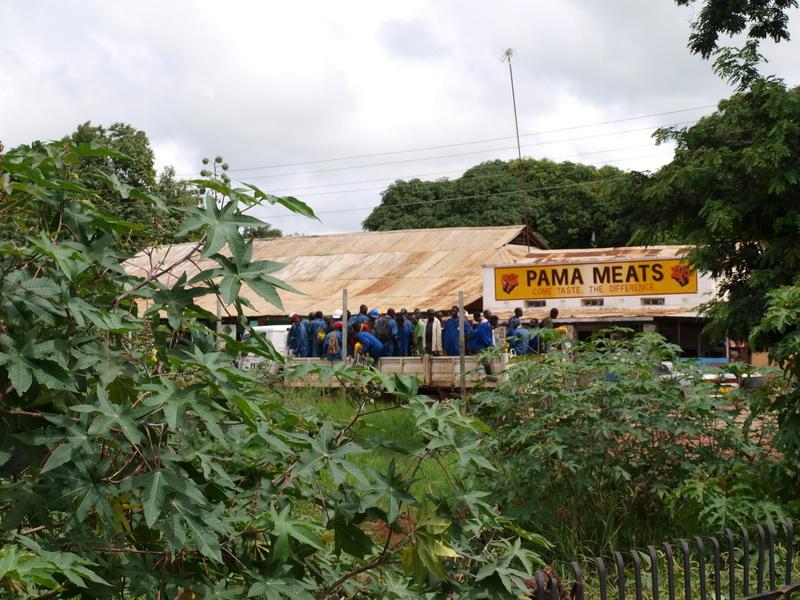 Driving to Kiamba Camp