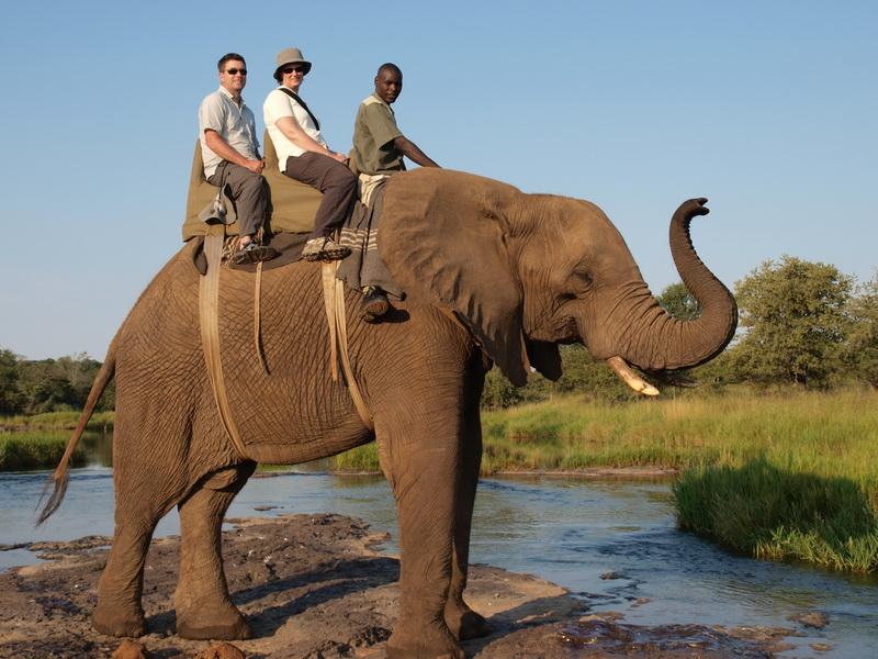 Elephant safari, Victoria Falls
