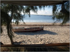 View from our tent, Casuarina Camp, Ilha da Mocambique