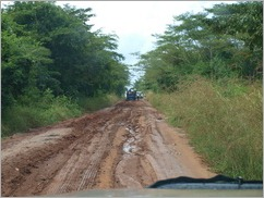 The road to Pangane
