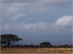 Mt Kilimanjaro, Amboseli National Park